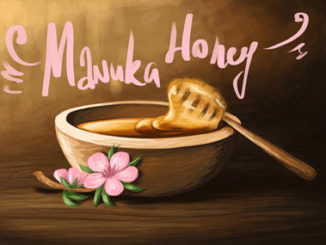 Manuka gegen Herpes