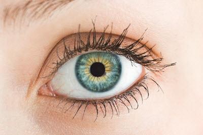 Augenherpes - Herpes im Auge